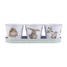 Trio of Herb pots with Tray - animals